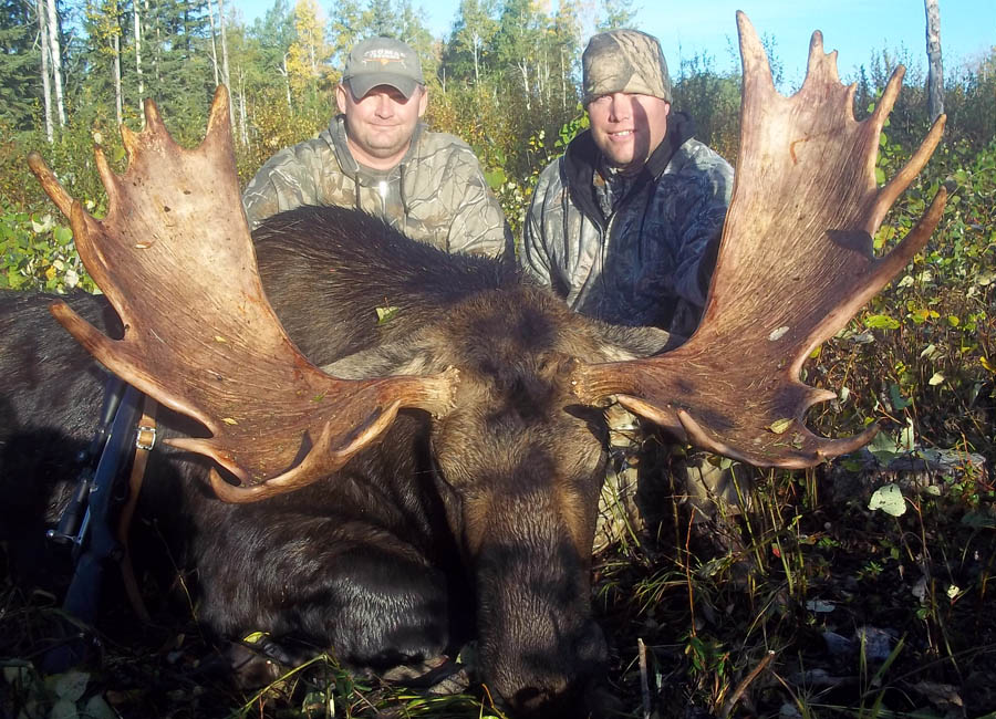 Rut Moose Hunts Alberta Canada