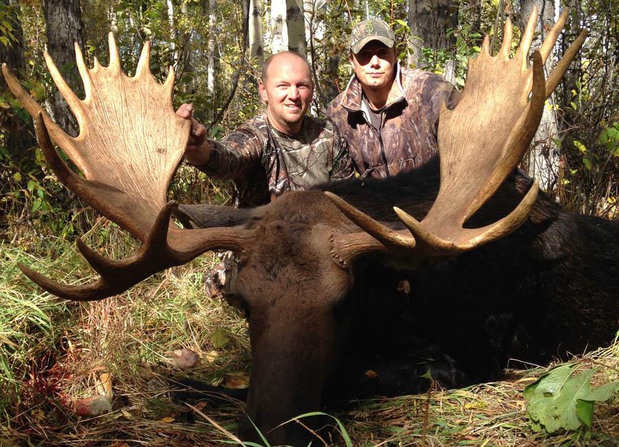Moose Rut Hunts Wild Kakwa Outfitters