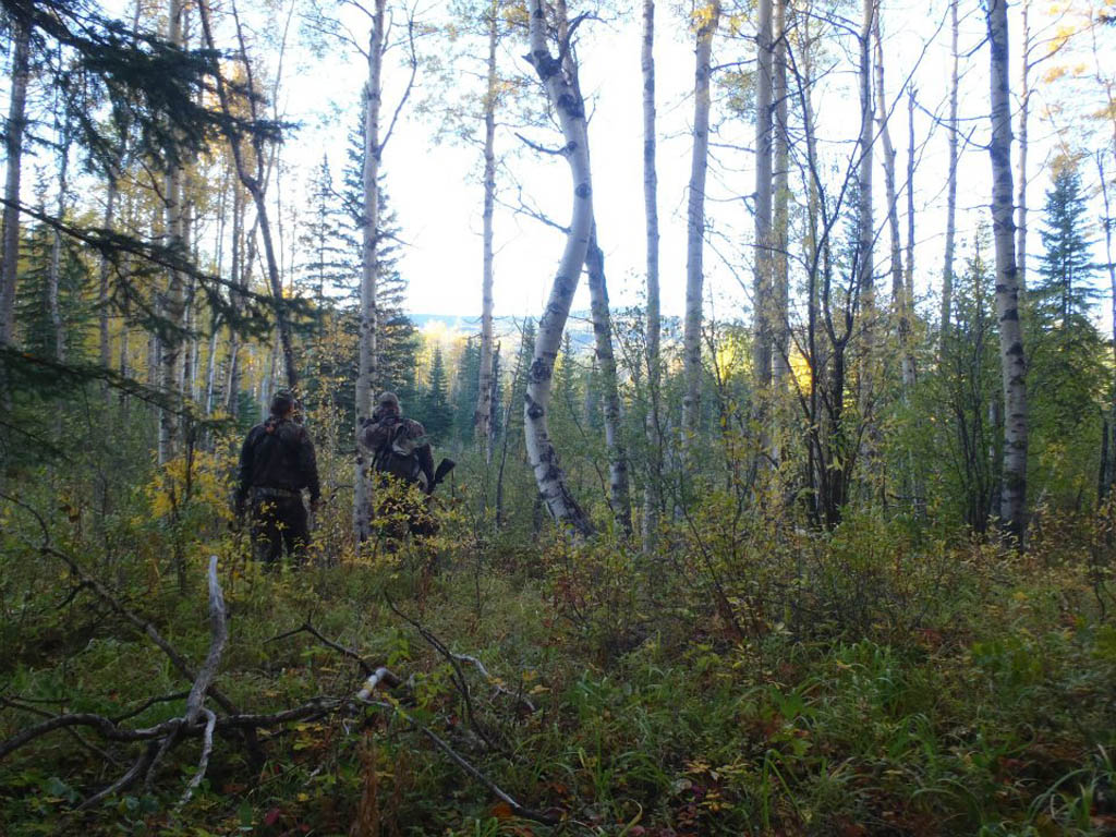 hunting outfitters alberta