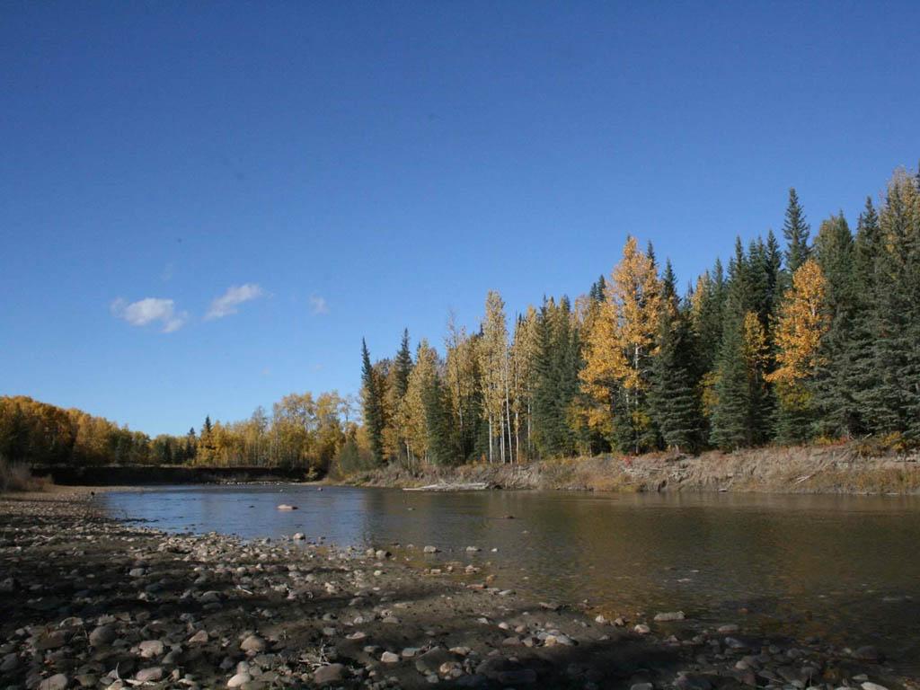 Alberta hunting area